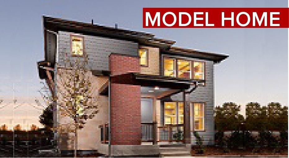 Skyline Model Home