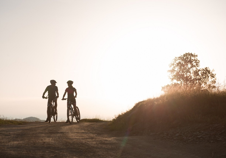 Photo Gallery_Stock-Bikes