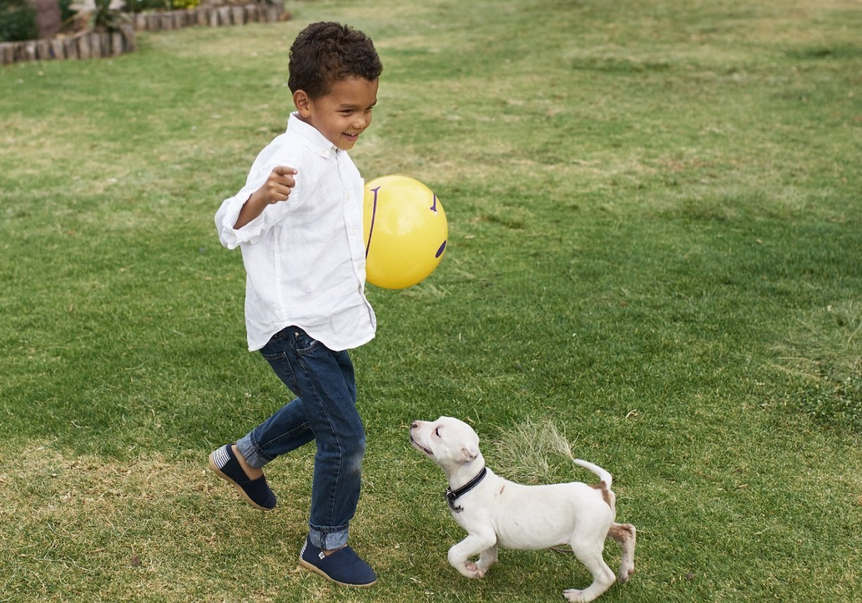 Photo Gallery_Stock-Boy with dog