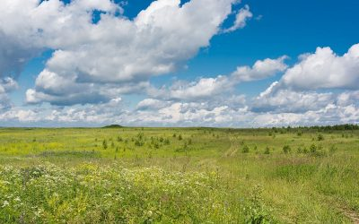 Find Room to Breathe in Wide-Open Spaces